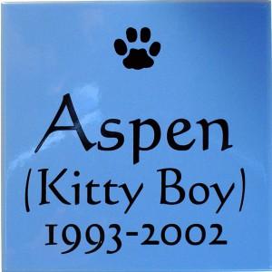 8x8 Aspen