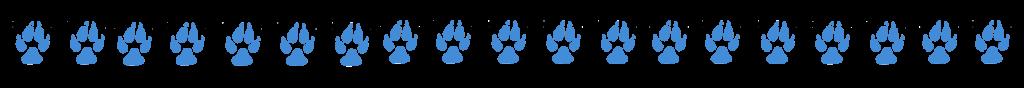 bluedogstrip